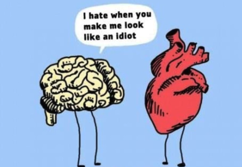 Sometimes the heart makes the brain look stupid