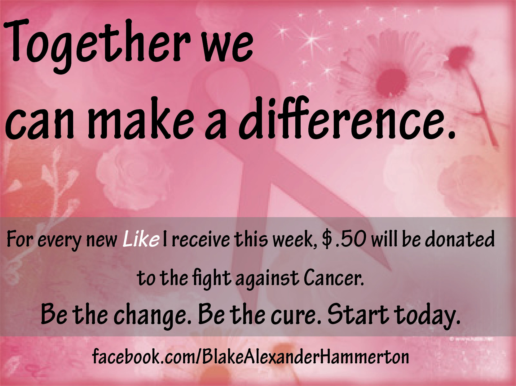 Click and like the page to be counted toward the donation goal!